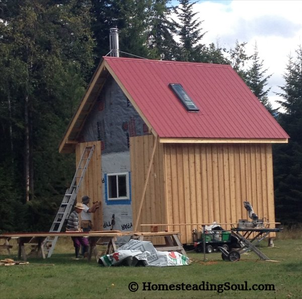 Building a cabin with cedar siding