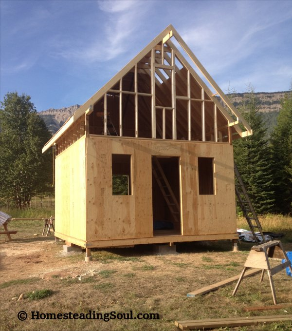 Building a cabin framing complete