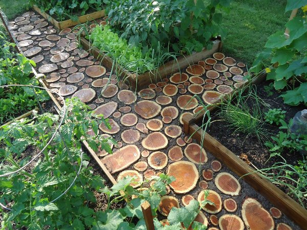 Wood walkway for the garden