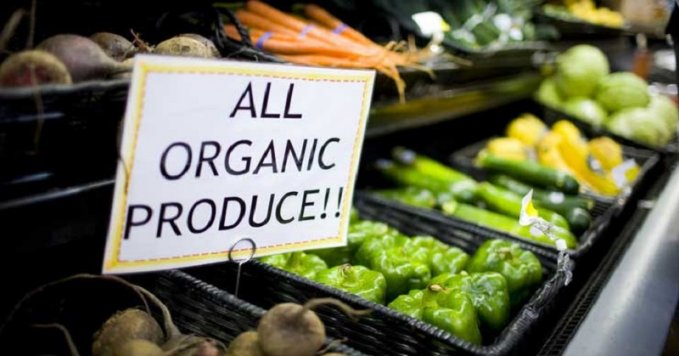 Denmark wants to be organic nation
